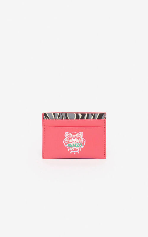 CORAL 'Tiny Tiger' card holder for men KENZO