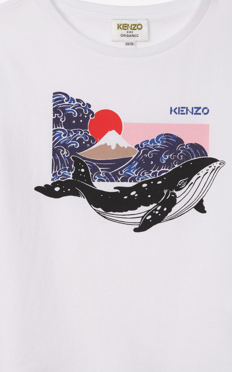 OFF WHITE Whale t-shirt for women KENZO