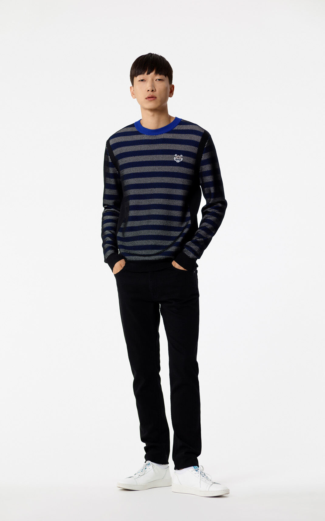 FRENCH BLUE Striped Tiger jumper for men KENZO