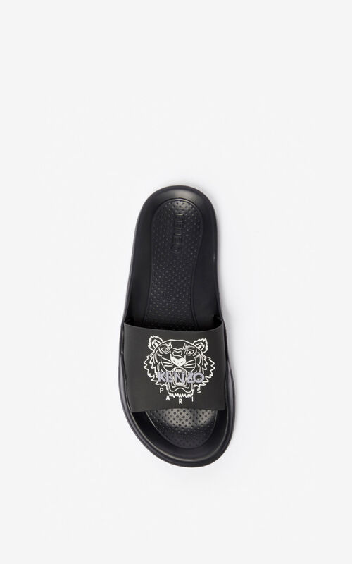 BLACK Tiger pool sliders for unisex KENZO