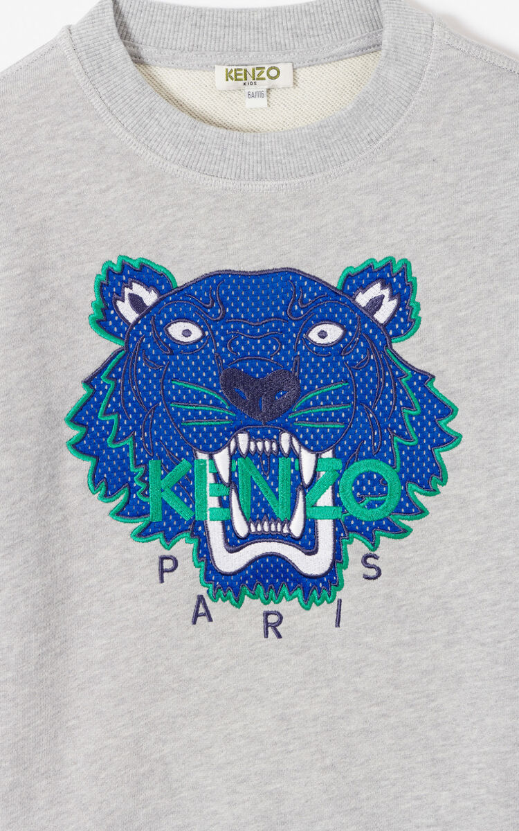 MISTY GREY 'Racing' Tiger sweatshirt for men KENZO