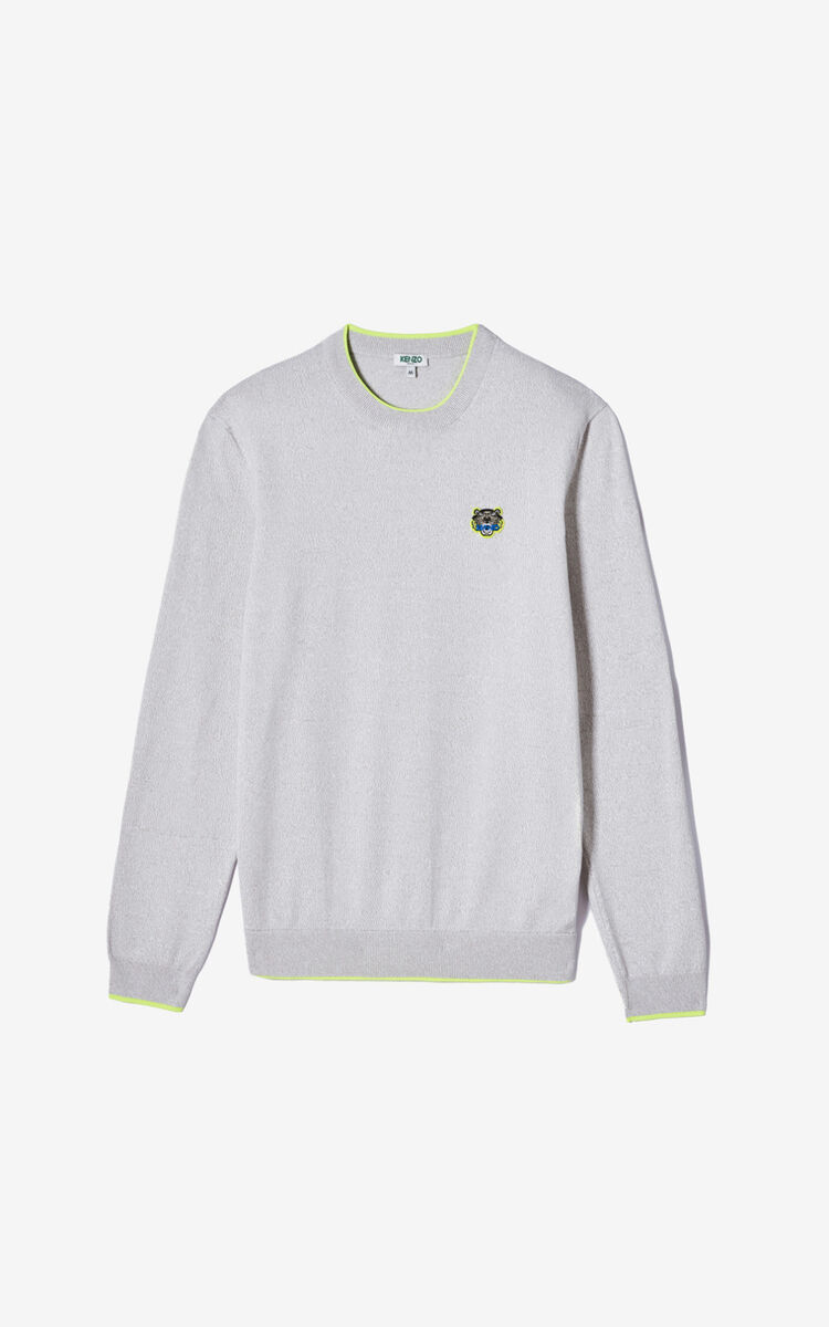 PALE GREY Tiger jumper for women KENZO