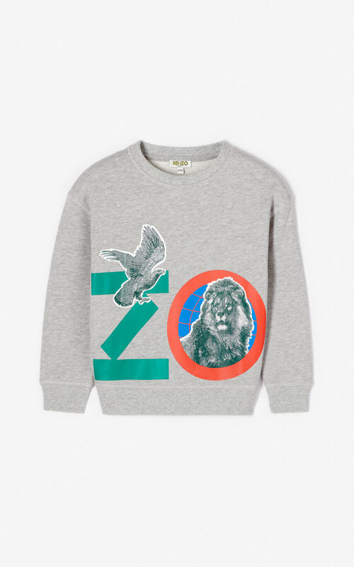 MIDDLE GREY 'Crazy Jungle' sweatshirt for men KENZO