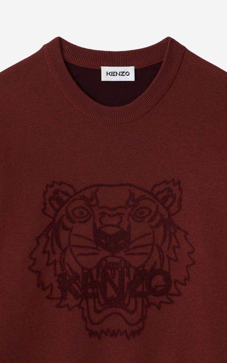 CARMINE Tiger jumper for men KENZO