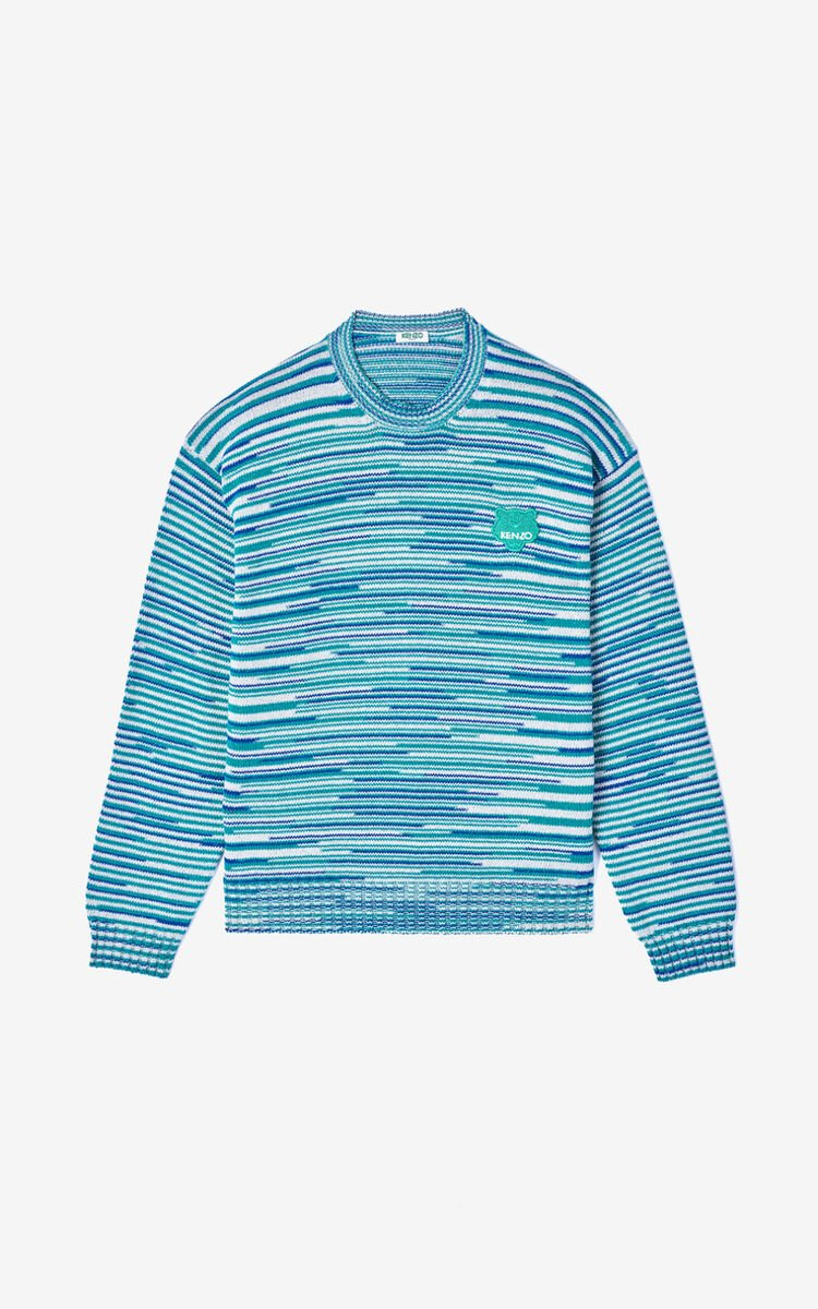 MINT Tiger jumper for men KENZO