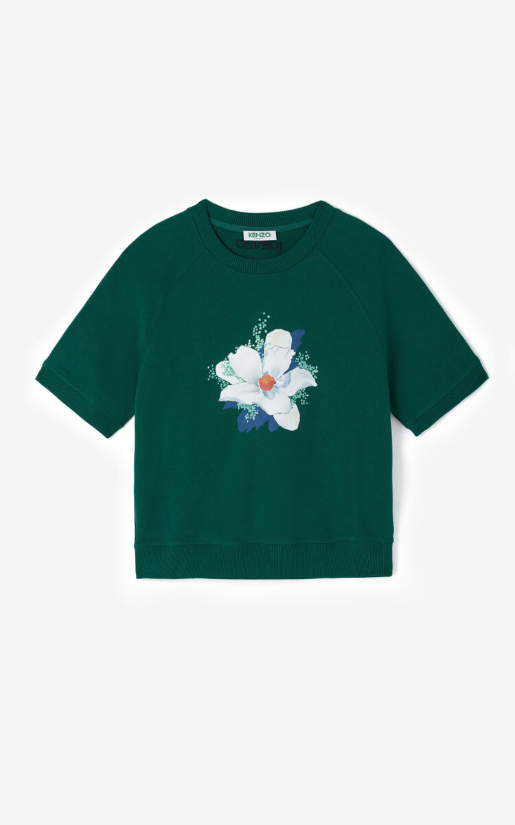 PINE 'Gardenias' sweatshirt for women KENZO
