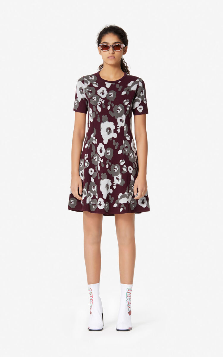 DOVE GREY 'Peonie' knit dress for women KENZO