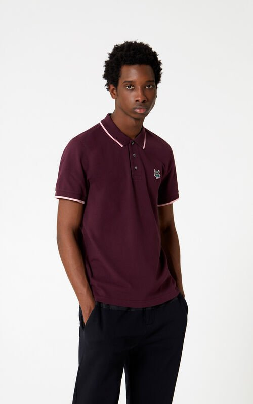 BORDEAUX Tiger polo shirt for men KENZO