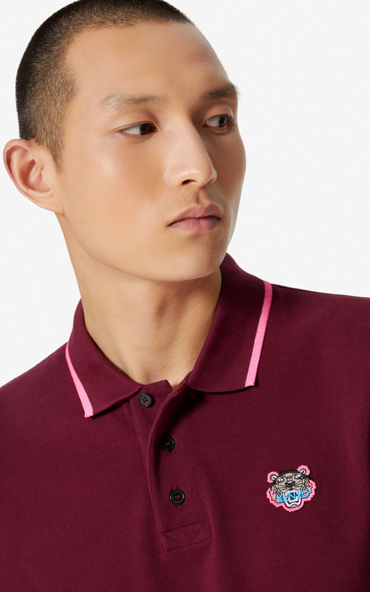 BORDEAUX Fitted Tiger polo shirt for men KENZO