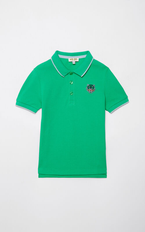GREEN Tiger polo shirt for men KENZO