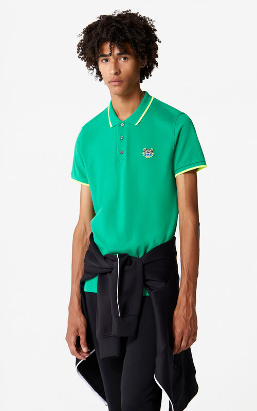GRASS GREEN Adjusted Tiger Polo for men KENZO