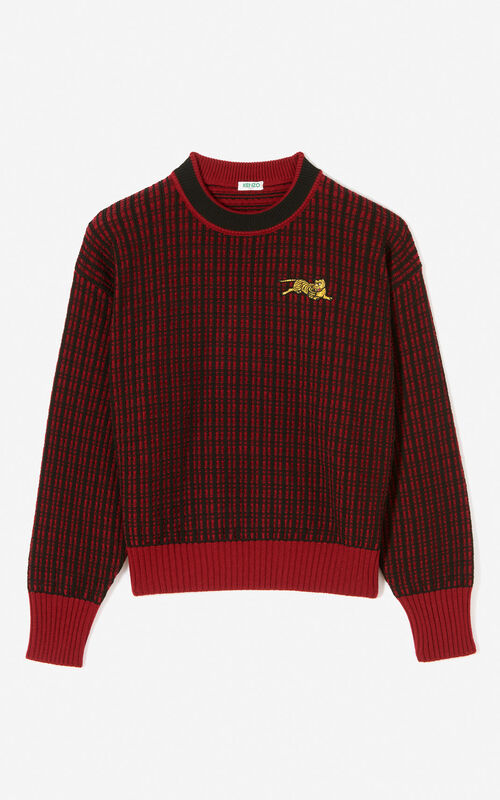 PRUNE 'Jumping Tiger' jumper for global.none KENZO