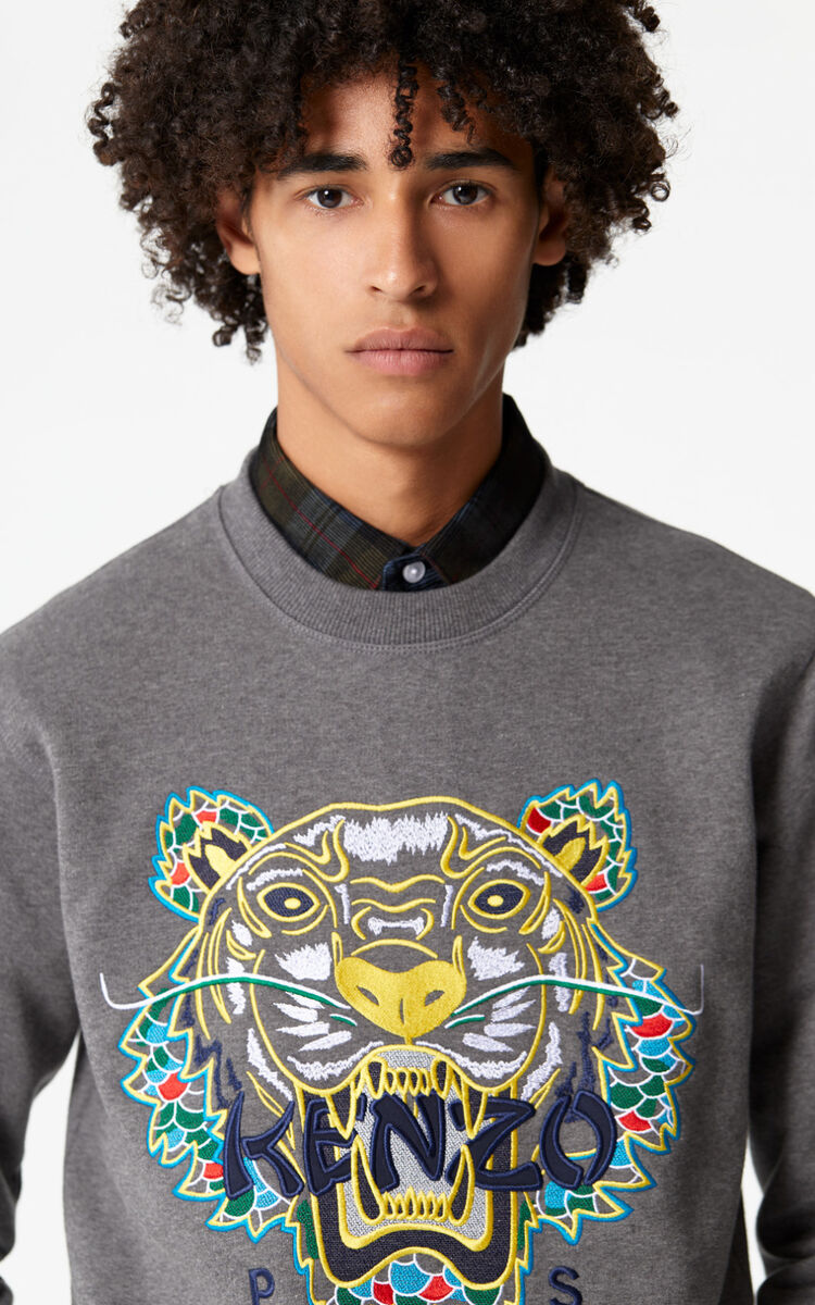 STONE GREY 'Dragon Tiger' Sweatshirt for men KENZO