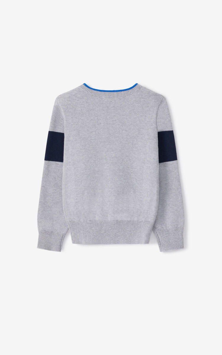 PEARL GREY KENZO Sport sweater for men