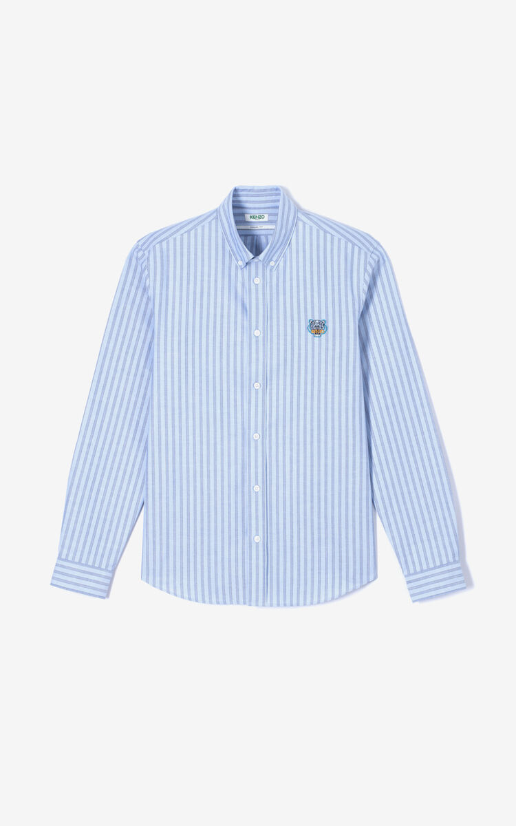 BLUE Striped casual Tiger shirt for men KENZO
