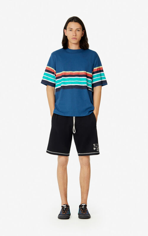 DUCK BLUE Striped t-shirt for men KENZO