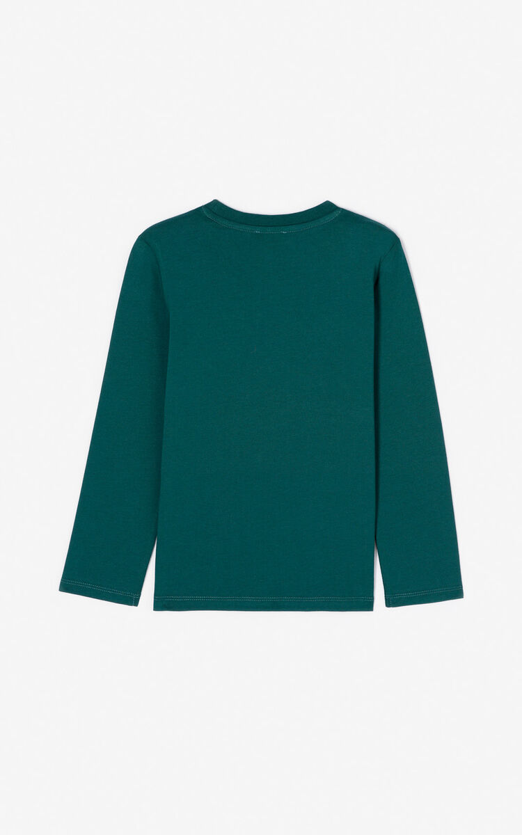 T-Shirt Tigre VERT BOUTEILLE homme KENZO