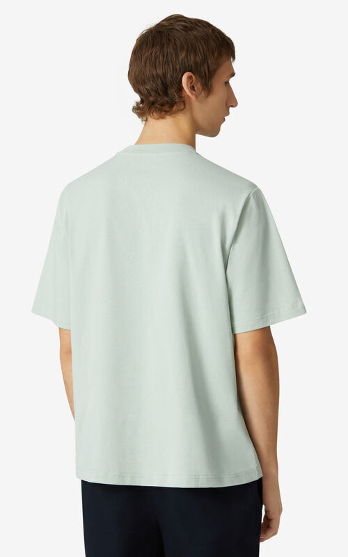 SAGE GREEN  Tiger loose-fitting T-shirt for men KENZO