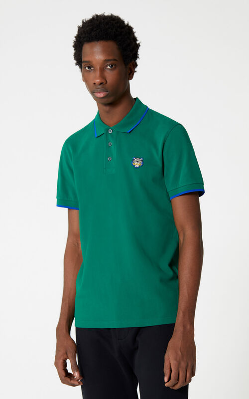 BOTTLE GREEN Tiger polo shirt for men KENZO
