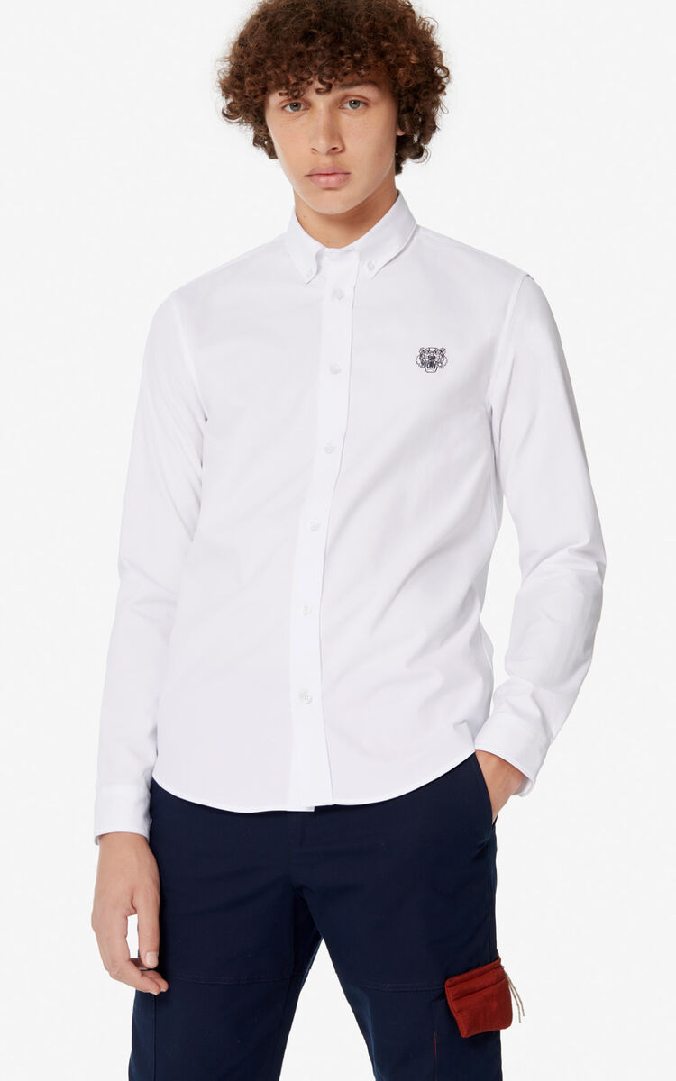 WHITE Casual Tiger shirt  for men KENZO