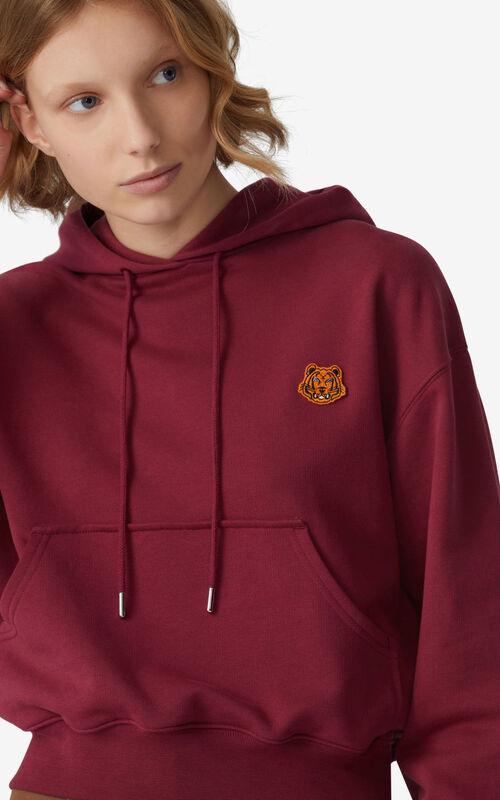 MAGENTA Tiger Crest boxy hooded sweatshirt for women KENZO
