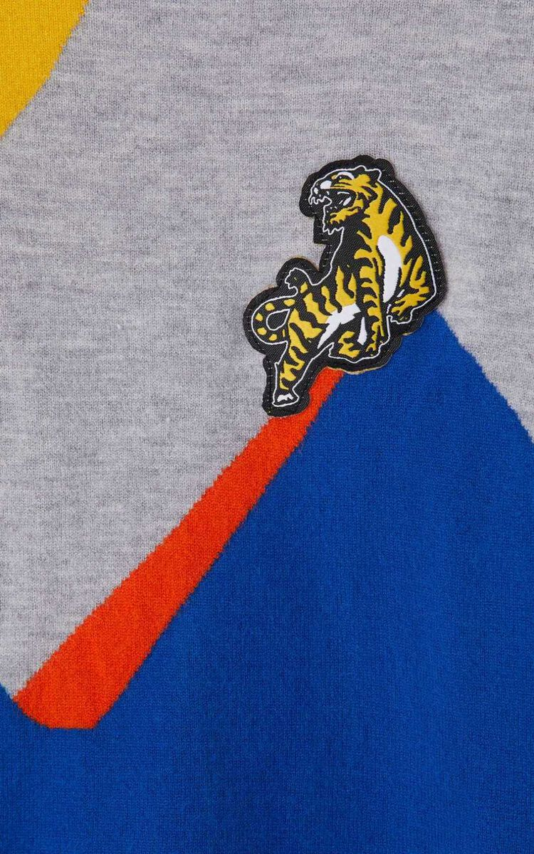 PEARL GREY 'Ventura' Tiger Sweater  for men KENZO