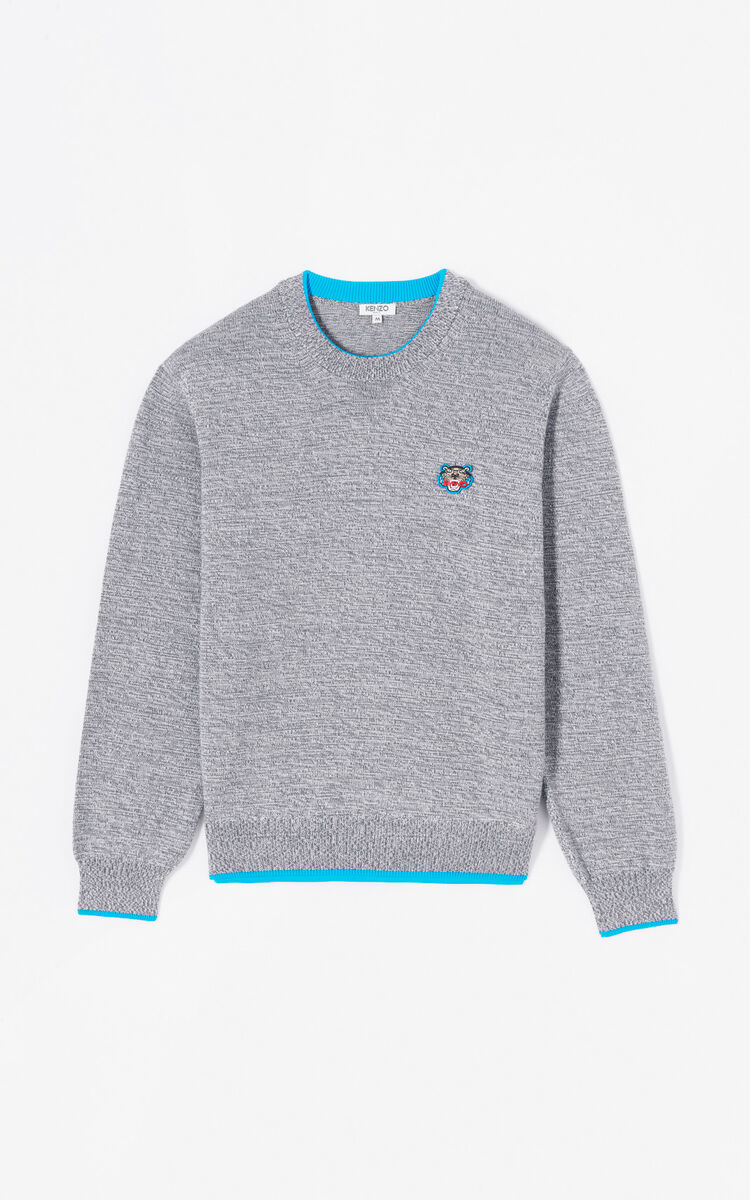 DOVE GREY Tiger jumper for women KENZO