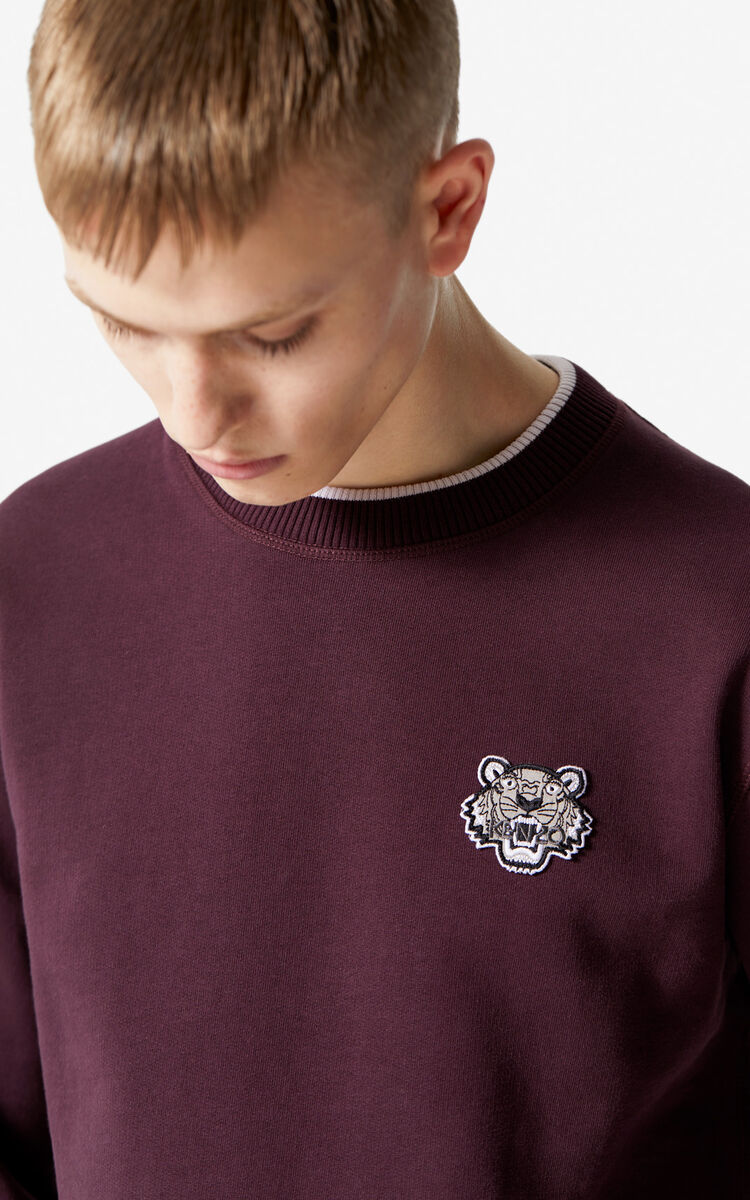 BORDEAUX Tiger Sweatshirt for men KENZO