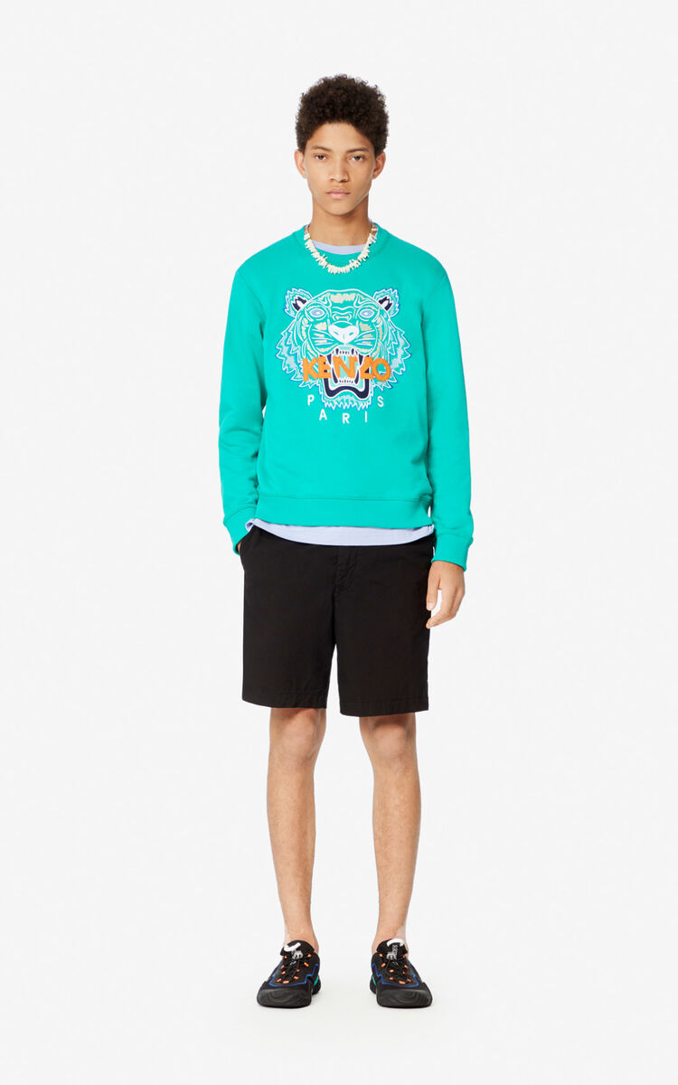 MINT Tiger sweatshirt for men KENZO