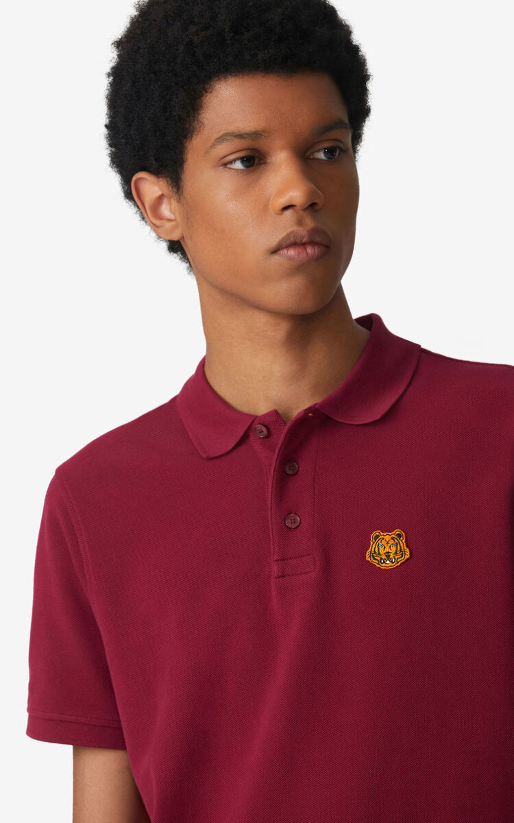 CARMINE Tiger Crest polo for men KENZO