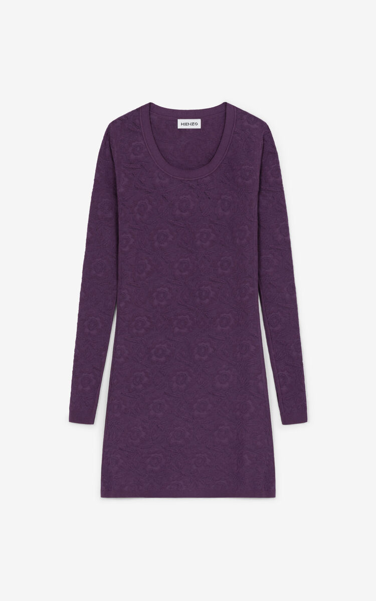 BLACKCURRANT Lace bodycon dress for women KENZO