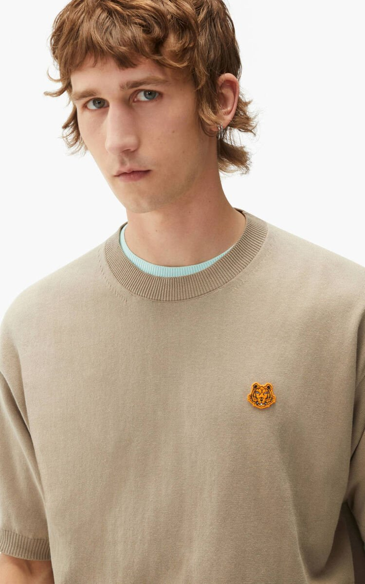 TAUPE Tiger Crest jumper     for women KENZO