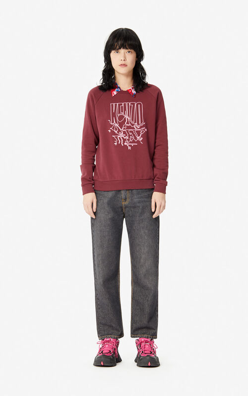 BORDEAUX 'KENZO Mountain' 'Capsule Expedition' sweatshirt  for women
