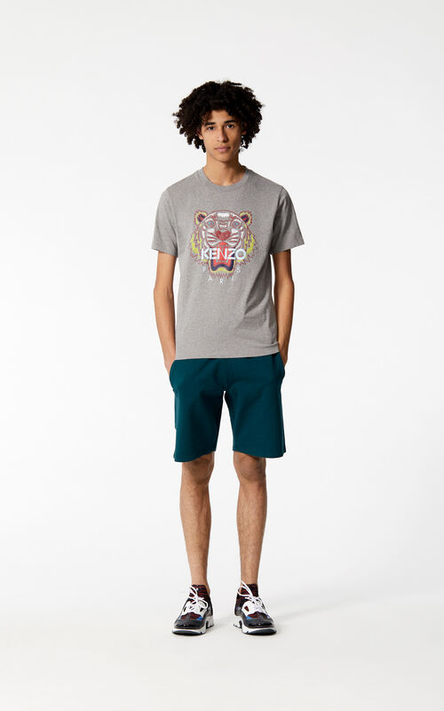 DOVE GREY Tiger t-shirt for men KENZO