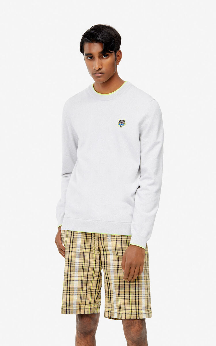 PALE GREY Tiger jumper for men KENZO