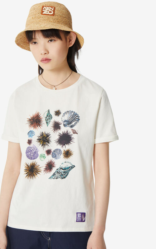 OFF WHITE 'Seashells & Urchins' 'High Summer Capsule Collection' T-shirt for men KENZO