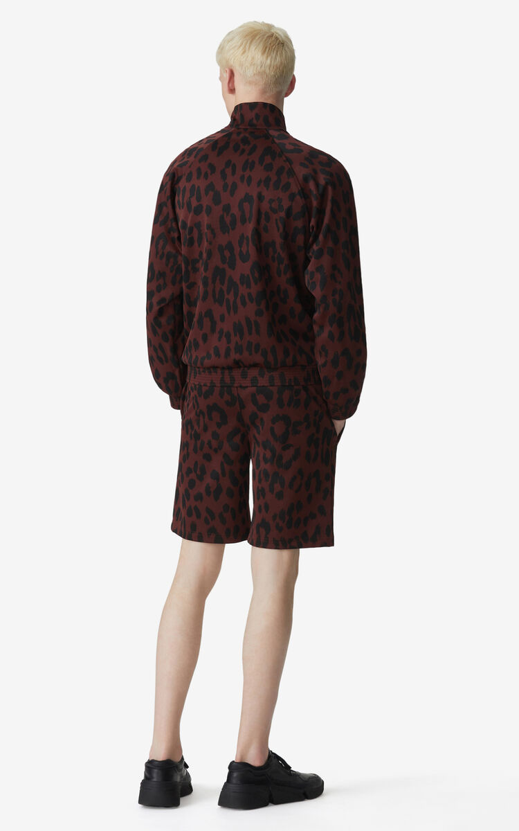 BORDEAUX 'Leopard' jacquard shorts for men KENZO