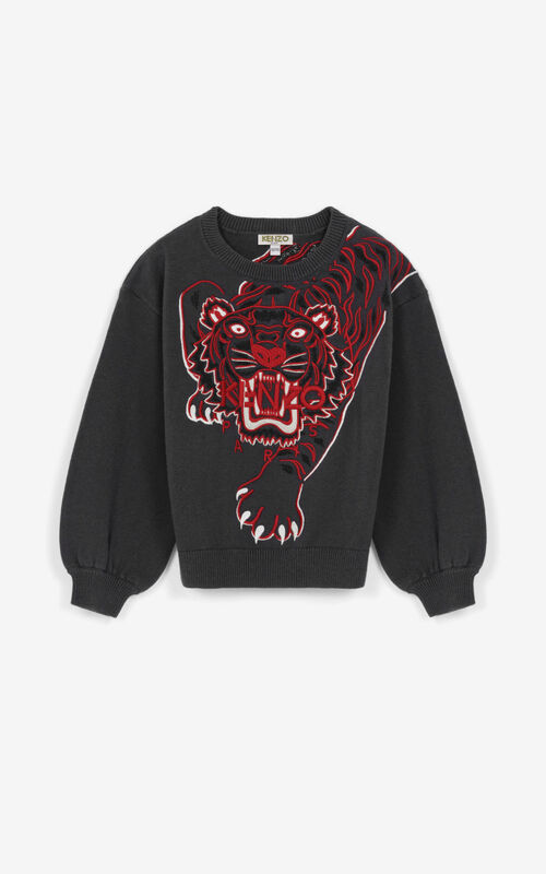 ANTHRACITE 'Geo Tiger' sweater for men KENZO