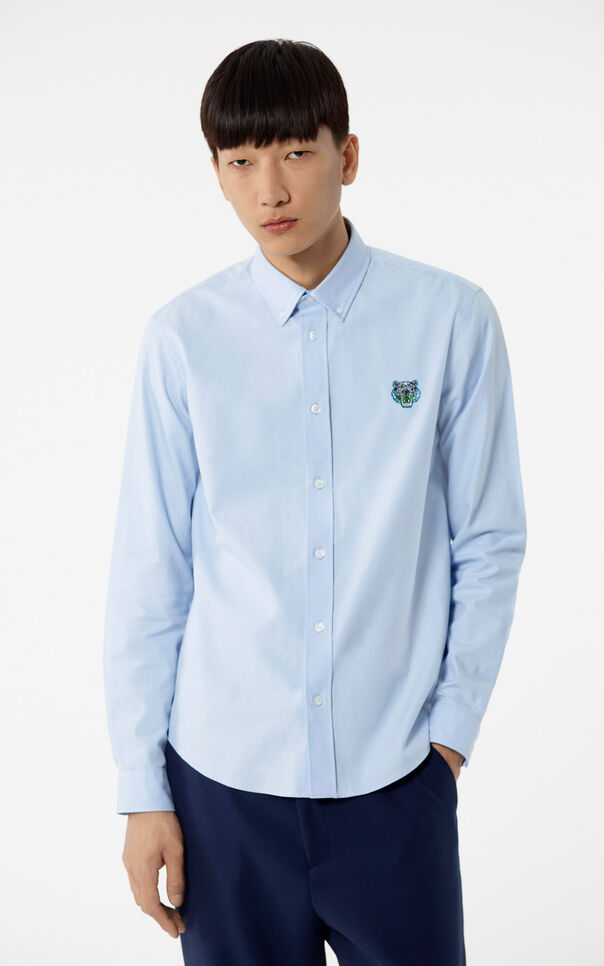 LIGHT BLUE Tiger shirt for men KENZO