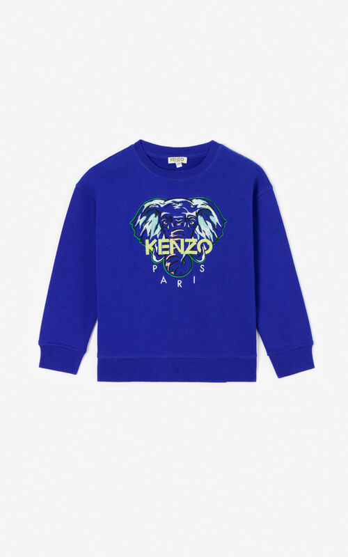 COBALT 'Disco Jungle' sweatshirt for unisex KENZO