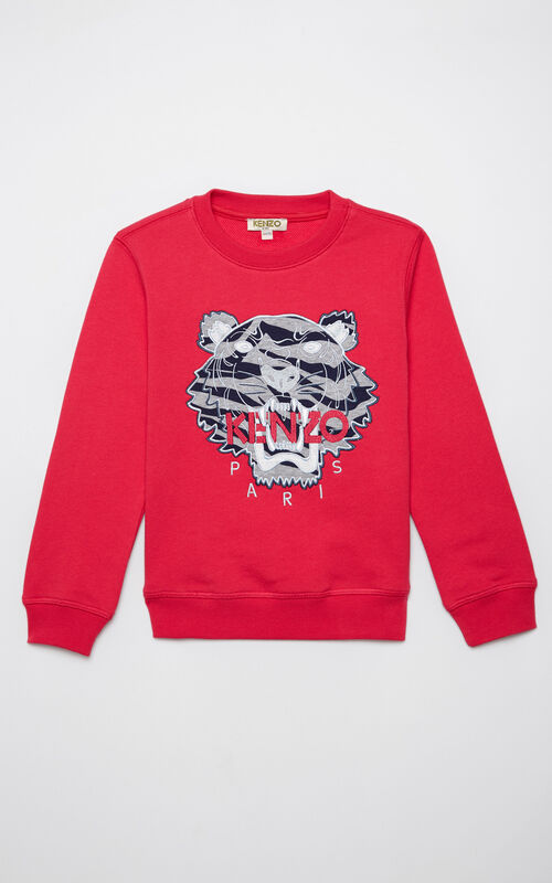 DEEP FUSCHIA Tiger sweatshirt 'Tiger Stripes' for men KENZO