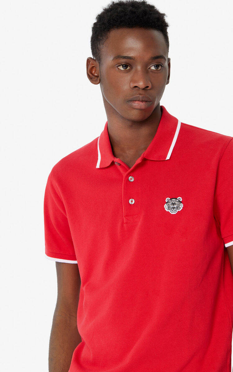 CHERRY Fitted Tiger polo shirt  for men KENZO