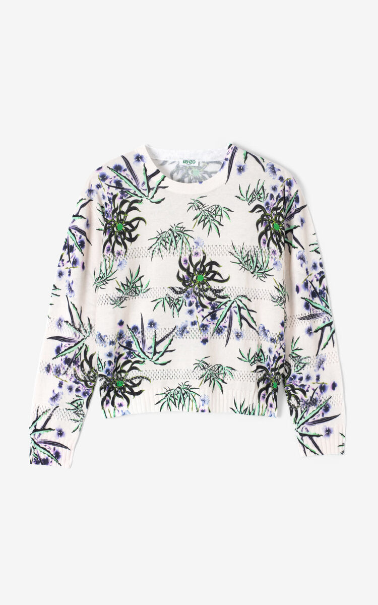 ECRU 'Sea Lily' jumper for women KENZO