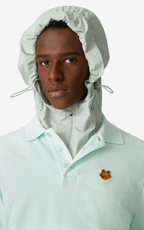 MINT Tiger Crest polo  for men KENZO
