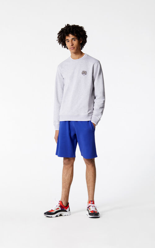 PALE GREY Tiger Crest Sweatshirt for men KENZO