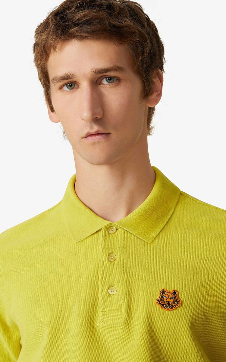 PISTACHE Tiger Crest polo for men KENZO