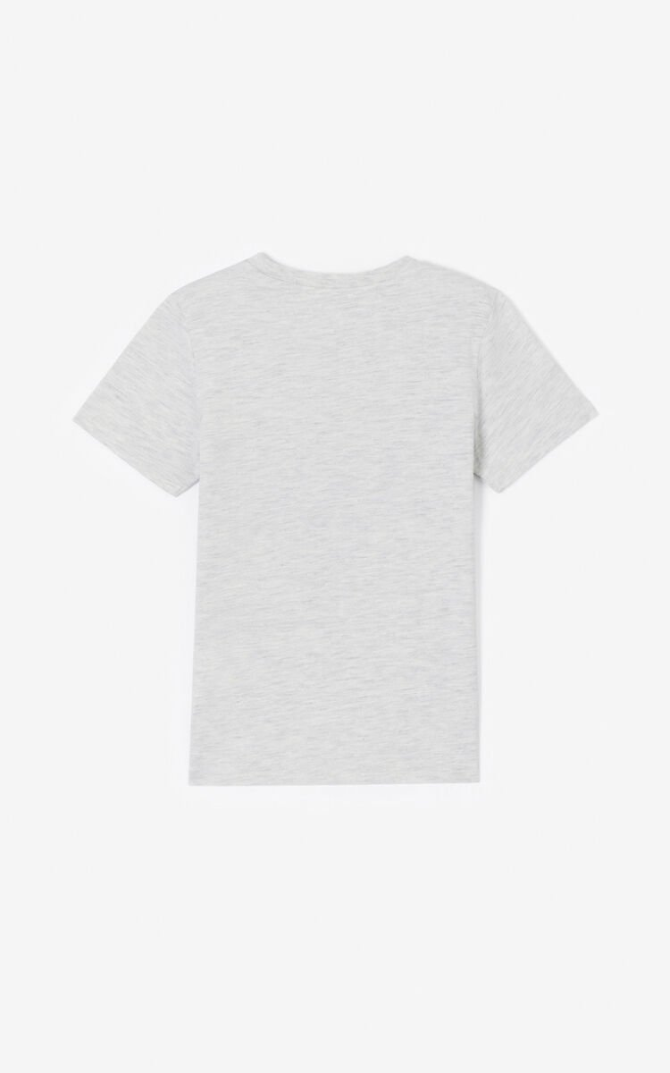 PALE GREY 'Cali Party' Tiger T-shirt for men KENZO