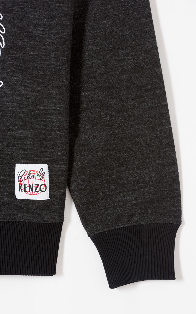 ANTHRACITE Dragon embroidery sweatshirt for women KENZO