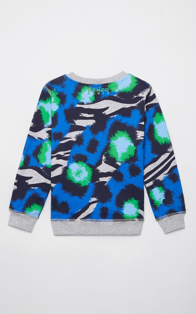 MIDDLE GREY 'Tiger Stripes' sweatshirt for men KENZO
