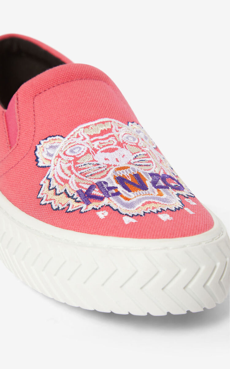 CORAL K-Skate Tiger slip-ons for women KENZO